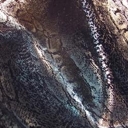silver meets snake picture© nextgurunow